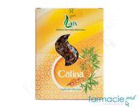 Ceai Larix Catina fructe 75g