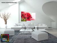 Картина напечатанная на холсте - Триптих красные розы 0001