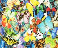 Ковер из бабочек, 40x50 см, aлмазная мозаика