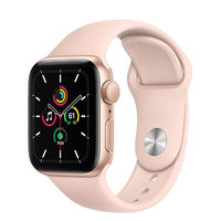 Apple Watch SE 40mm Gold Aluminum Case