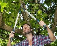 Ножницы садовые Gardena EnergyCut 750 B (12007-20)