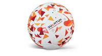 купить Мяч матчевый футбольный Alvic Quantum N5 в Кишинёве