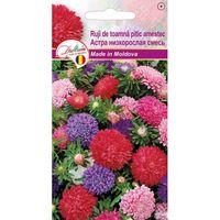 купить Семена  Астра низкоросл розов  0.1 гр DS в Кишинёве