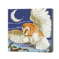 Ночной полет совы, 20x20 см, алмазная мозаика