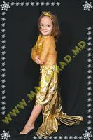 Карнавальный костюм: Золотая Рыбка