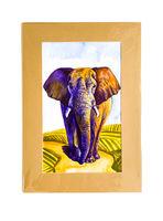 """""""Elefant din Africa"""""""