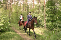 Прогулка на конях