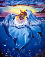Pictura pe numere VGR 40x50 RA 3325 Delfinii