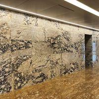 Marmura Arabescato Polisata 60 x 30 x 2 cm - Translucida