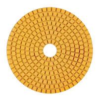 Pad diamantat p-u lustruire 100x3x15 №120  Standard