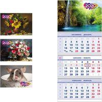 Календарь настенный BV трехсекционный 2020 30x21.5см