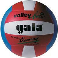 Мяч волейбольный Gala Training color 5061