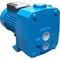 Hidrofor-motor Elefant AUTODP505B