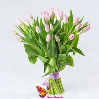 купить Розовый  голландские тюльпаны поштучно в Кишинёве