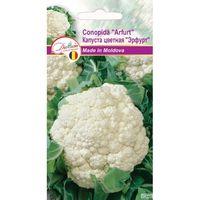 купить Семена  Капуста цветная Эрфрут   0.5 гр DS в Кишинёве