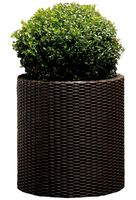 Curver Cylinder Planter L Dark Brown (223947)
