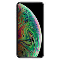 iPhone Xs Max, 256Gb	Grey