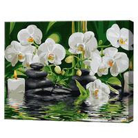 Orhidei albe, 40х50 cm, pictură pe numere Articol: GX29693