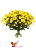 купить Хризантема кустовая мини желтая  поштучно в Кишинёве