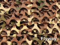 SPECIAL Flyway