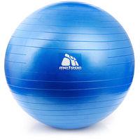 купить Мяч гимнастический d=65 см с насосом Meteor 31133 (368) в Кишинёве