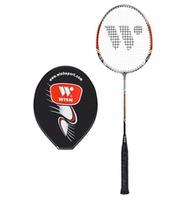 cumpără Racheta badminton Alumtec 317 (husa 1/2) în Chișinău