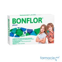 Bonflor plic. N10