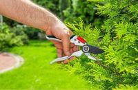 Ножницы садовые Verto 15G206