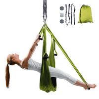 купить Гамак для йоги Aero Yoga inSPORTline 12699 / 14147 (3080) в Кишинёве