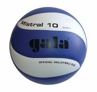 купить Мяч волейбольный Gala Mistral 10 panels 5661 (139) в Кишинёве