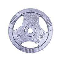 cumpără Disc din metal 20 kg d=30 mm 12713 (703) în Chișinău