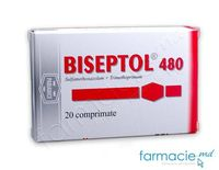 Biseptol comp. 480mg N20