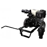 купить Профессиональная Мотопомпа DWP 390 H4 в Кишинёве