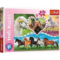 "Puzzle ""200"" - cai frumoși, cod 43114"