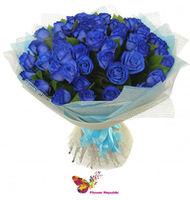 купить Букет из 31 синей розы Ecuador 70-80 см в Кишинёве