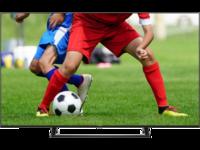 """cumpără Televizor 55"""" LED TV Hisense H55A7300F, Black în Chișinău"""