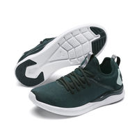 Кроссовки Puma IGNITE Flash evoKNIT SR Wn's