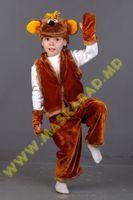 Карнавальный костюм: Обезьянка
