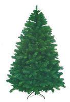 Christmas American Pine 14743