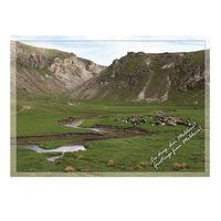 купить Почтовая Открытка – Река Драгиште в Кишинёве