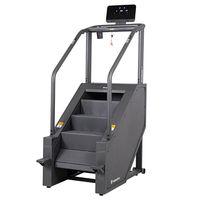 Степпер лестничный Stairmaster ProfiStair Lite 20216 (под заказ) inSPORTline