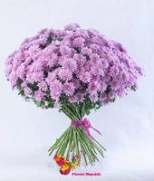 купить Хризантема кустовая розовая поштучно в Кишинёве