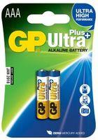 24 AUP-U2 GP bat. AAA