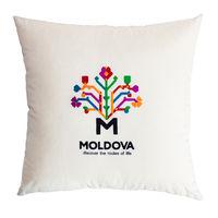 cumpără Декоративная эко подушка Молдова – 50x50 см în Chișinău