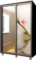 Шкаф-купе Bafimob D-140 Glass+Sakura Wenge