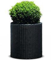 Curver Cylinder Planter L Anthracite (212427)