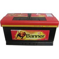 Banner Power Bull P95 33