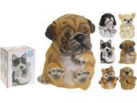 купить Собака декоративная разных пород H13.5cm, 10Х10cm в Кишинёве