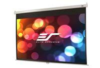 Manual 178x178cm EliteScreens 1:1, M99UWS1, Black case