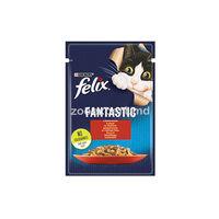 Felix Fantastic cu vita